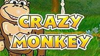 Бесплатный автомат Crazy Monkey